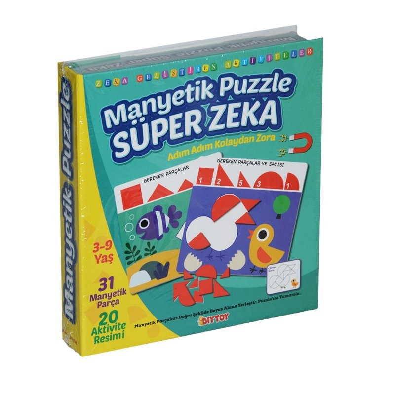Manyetik Puzzle - Süper Zeka